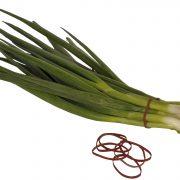 venhart-no31-spring-onions